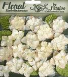 Cream - Velvet Hydrangeas - Petaloo