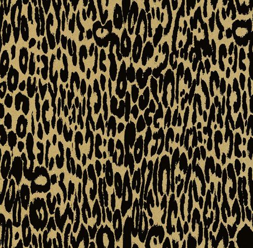 Leopard Black & Kraft Paper - Canvas Corp