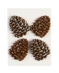 Glittered Edge Pine Cones - Dimensional Stickers - Jolees