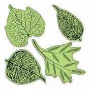 Fossil Leaves Stamp - Stamping Gear - Inkadinkado
