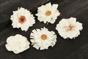 Tessitura Handmade Flowers W/Decorated Middles - Prima