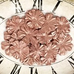 Copper Paper Petals - Sunrise Sunset - Prima