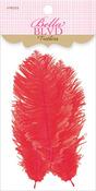 McIntosh Feathers - Sophisticates - Bella Blvd
