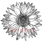 Large Sunflower Rubber Stamp - Deep Red Stamps