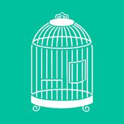 Birdcage 6 x 6 Template - KaiserCraft