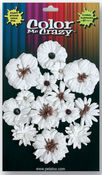 Medium & Mini Darjeeling Flowers Color Me Crazy - Petaloo