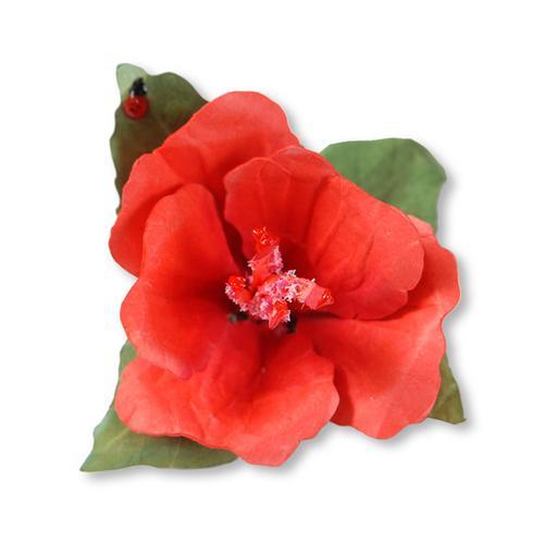 Hibiscus Flower Dies - Susans Garden - Sizzix