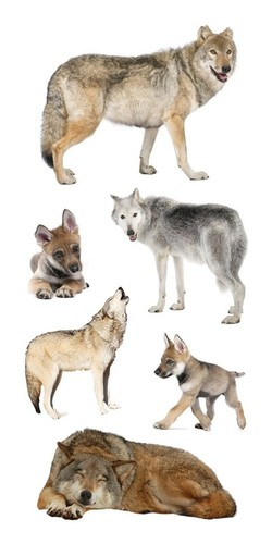 Wolves National Wildlife Stickers - Paper House