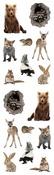 Baby Woodland Animal Stickers - Mrs. Grossmans
