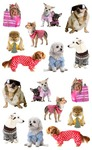 Pampered Dog Stickers - Mrs. Grossmans