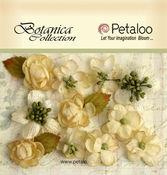 Ivory Mini Botanica - Petaloo