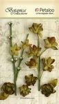 Moss Green Floral Ephemera - Petaloo