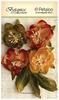 Amber Tones Faux Dried Blooms - Petaloo