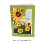 "Grid Works 2-3/8"" x 3-3/8"" Rectangles - Susan's Garden"