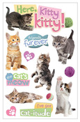 Here Kitty Kitty 3D Stickers - Paper House
