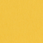 Desert Sun 12 x 12 Cardstock - Bazzill