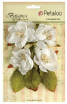 White Botanica Blooms - Botanica Collection - Petaloo