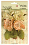 Peach Botanica Blooms - Botanica Collection - Petaloo