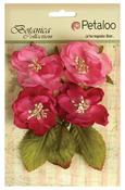 Fuchsia Botanica Blooms - Botanica Collection - Petaloo