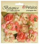 Coral Botanica Mini Flowers - Petaloo