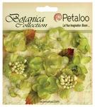 Pistachio Botanica Mini Flowers - Petaloo