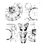 Specimen 12 x 12 Stencil - The Crafters Workshop
