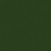 Avocado 12 x 12 Cardstock - Bazzill