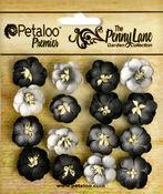 Black Forget Me Nots - The Penny Lane - Petaloo