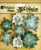 Sea Green Mini Wild Roses - The Penny Lane - Petaloo