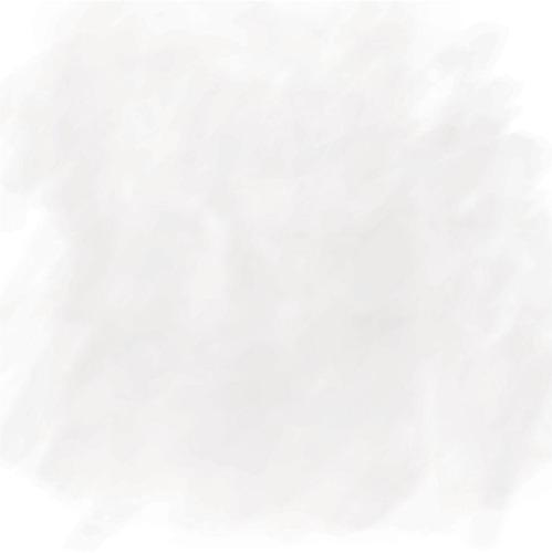 Foundation Paper - Accomplished - Authentique