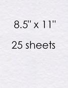 White Prismatic 8.5 x 11 Cardstock 25 Count - Bazzill
