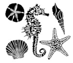 Sea Creatures 12x12 Template - Crafter's Workshop