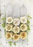 Tiara Flowers - London - Prima