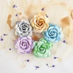Thoroughbred Flowers - Del Mar - Prima