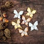 Garlands Vellum Paper Butterflies - Bethleham - Prima
