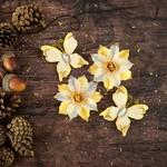 Joyful Vellum Paper Flowers & Butterflies - Bethleham - Prima