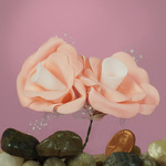 "Peach Foam with White Center 2"" Roses w/ Tulle"