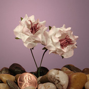 "Pink Stargaze Wildflower Bouquet 1 1/8"" Paper Flowers"
