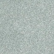 Detail Silver - Judikins Embossing Powder 2oz
