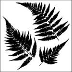 "Ferns - Crafter's Workshop Template 12""X12"""