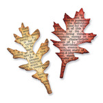Mini Tattered Leaves Movers & Shapers Magnetic Dies By Tim Holtz - Sizzix