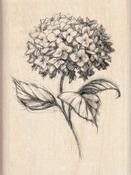 Hydrangea - Inkadinkado Mounted Rubber Stamp
