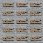 """Natural 1.1""""X.3"""" - Mini Wooden Clothes Pins 15/Pkg"""