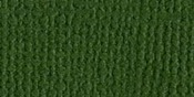 "Ivy/Canvas Cardstock 8.5""X11"" - Bazzill"