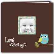 "Blue - Baby Owl Printed Design Post Bound Scrapbook Album 12""X12"""