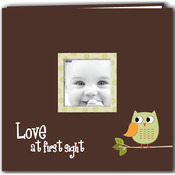 "Green - Baby Owl Printed Design Post Bound Scrapbook Album 12""X12"""