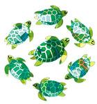 Sea Turtles - SandyLion Classpak Stickers 3/Pkg