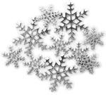 Snowy Splendor 8/Pkg - Favorite Findings Buttons