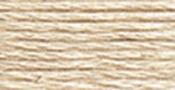 Beige Grey Light - DMC Six Strand Embroidery Cotton 100 Gram Cone
