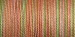 Summer Fruit - Sulky Blendables Thread 12wt 330yd